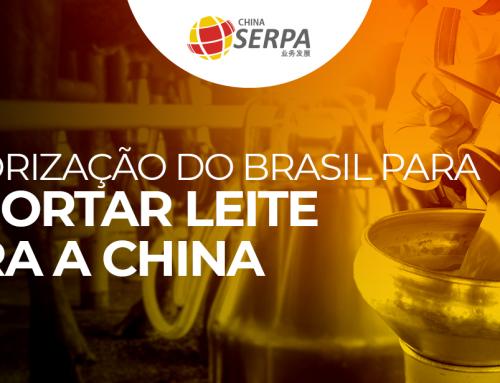 Exportação de leite no Brasil ganha uma nova oportunidade